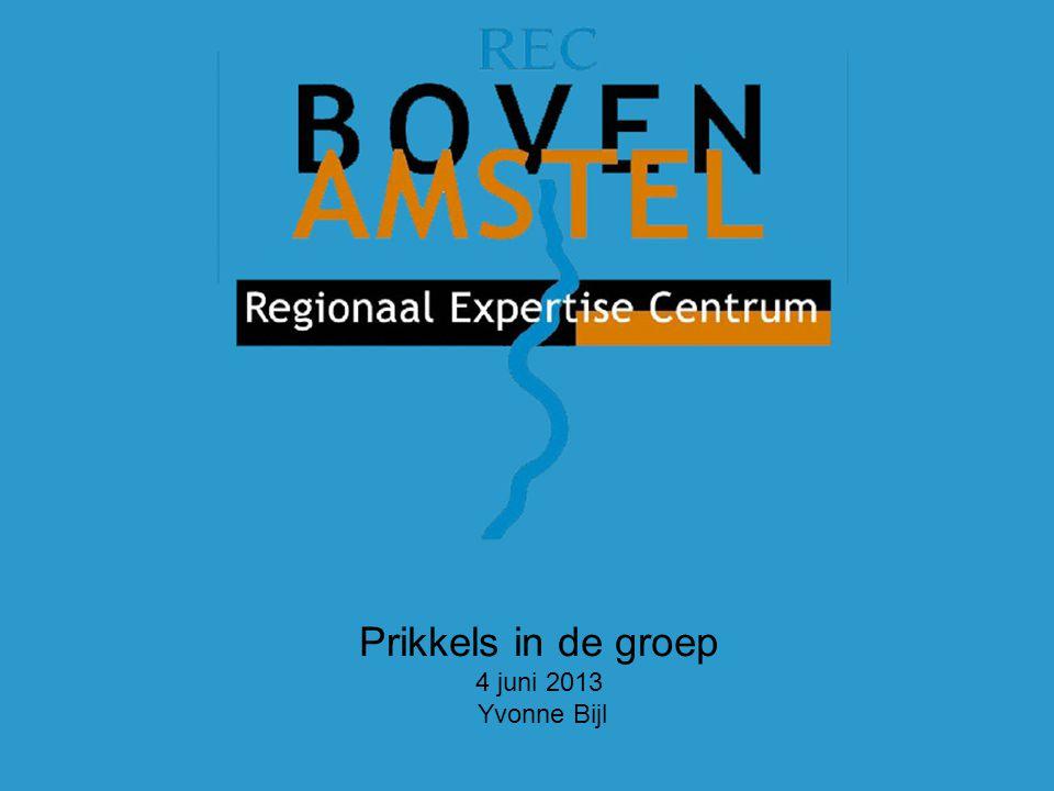 Prikkels in de groep 4 juni 2013 Yvonne Bijl