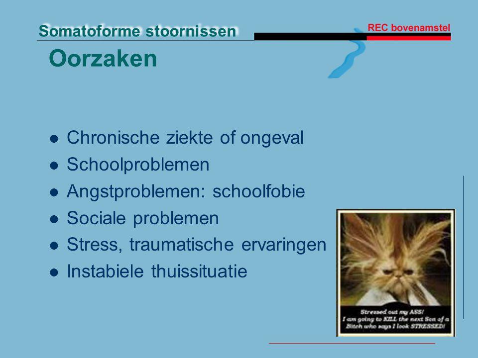 Oorzaken Chronische ziekte of ongeval Schoolproblemen