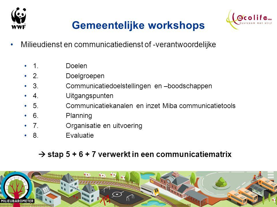 Gemeentelijke workshops