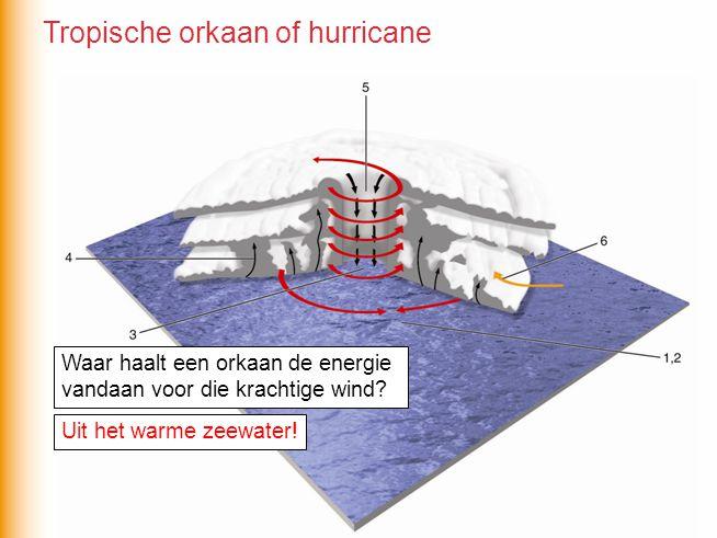 Tropische orkaan of hurricane