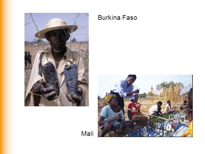 Burkina Faso Mali