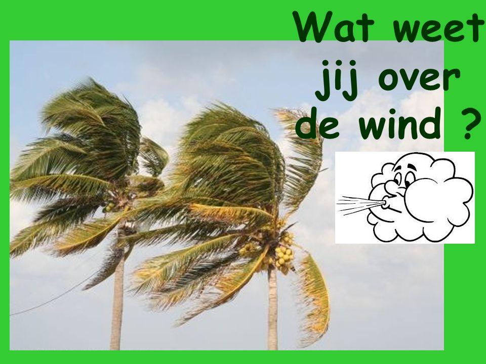 Wat weet jij over de wind