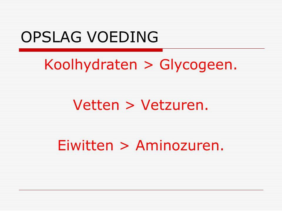 OPSLAG VOEDING Koolhydraten > Glycogeen. Vetten > Vetzuren.