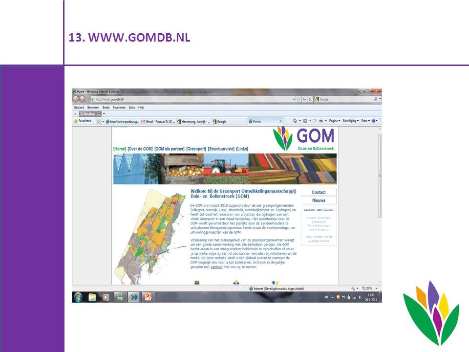 13. WWW.GOMDB.NL