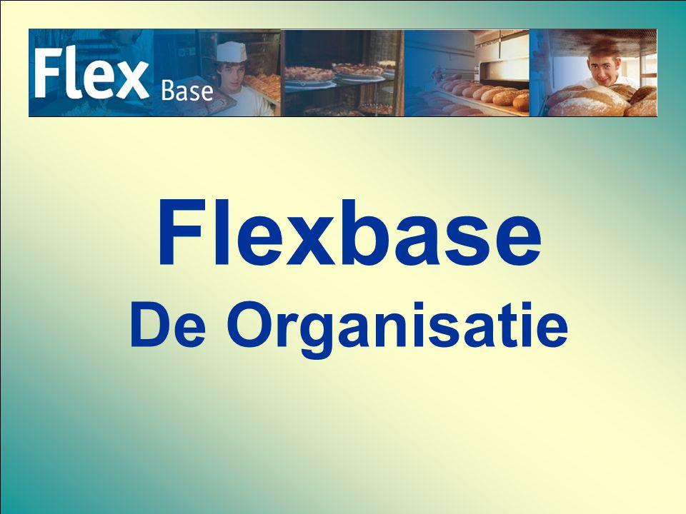 Flexbase De Organisatie