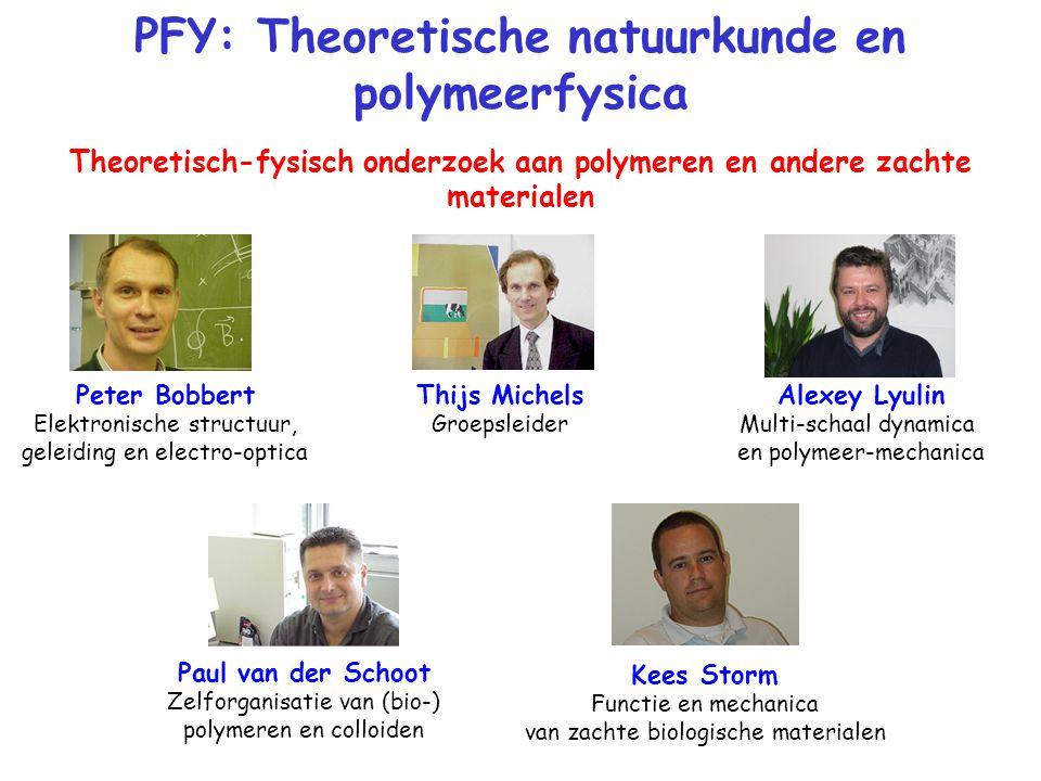 PFY: Theoretische natuurkunde en polymeerfysica