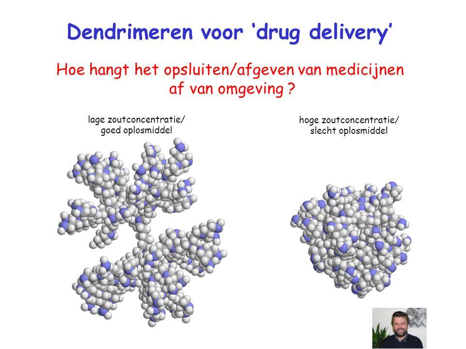 Dendrimeren voor 'drug delivery'