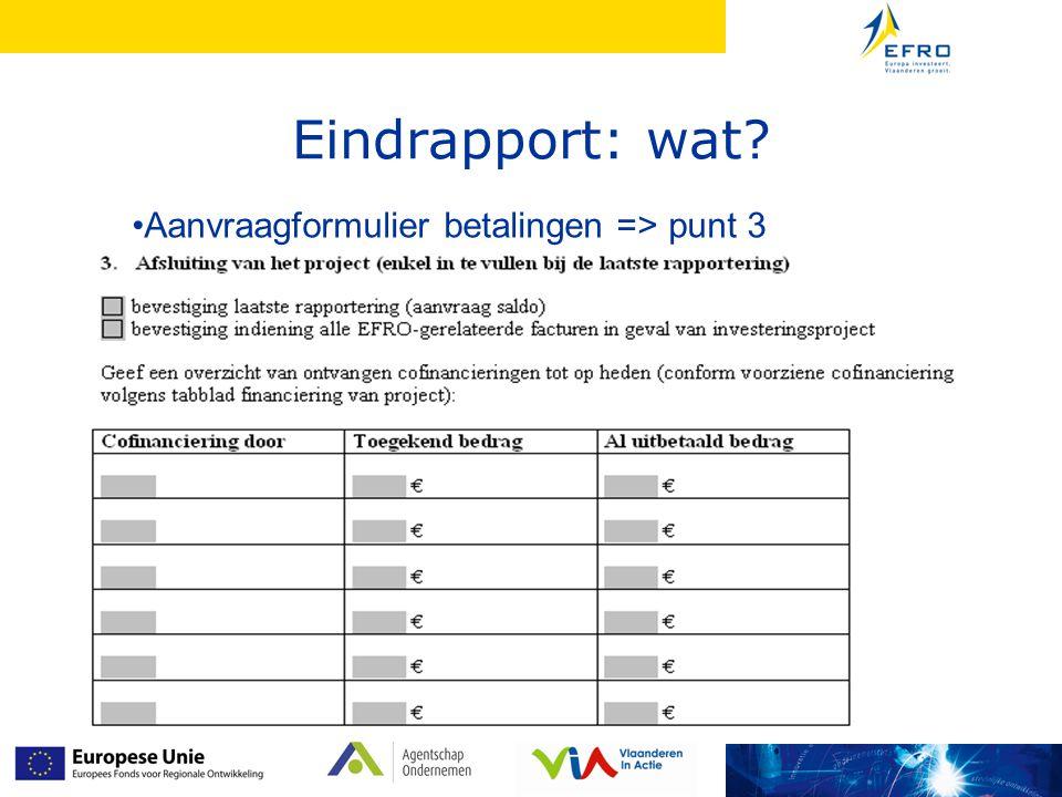Eindrapport: wat Aanvraagformulier betalingen => punt 3 6