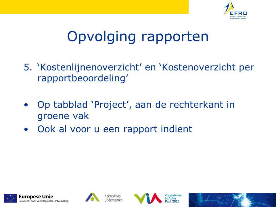 Opvolging rapporten 'Kostenlijnenoverzicht' en 'Kostenoverzicht per rapportbeoordeling' Op tabblad 'Project', aan de rechterkant in groene vak.