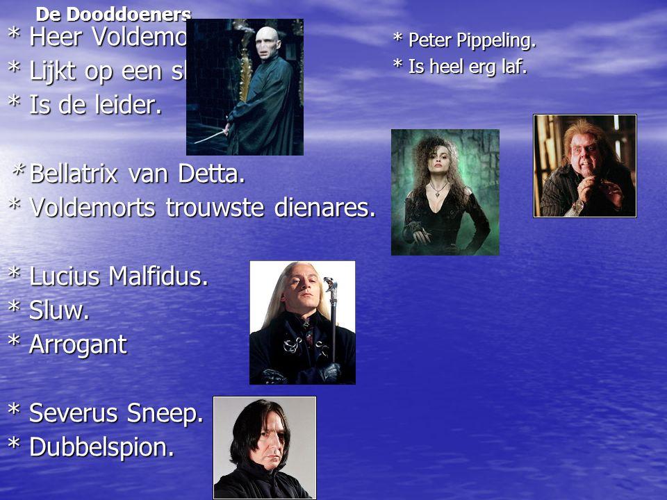 * Voldemorts trouwste dienares. * Lucius Malfidus. * Sluw. * Arrogant