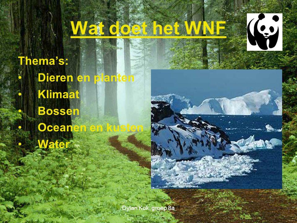 Wat doet het WNF Thema's: Dieren en planten Klimaat Bossen