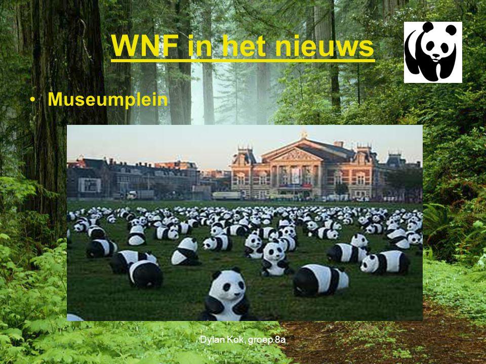 WNF in het nieuws Museumplein Dylan Kok, groep 8a