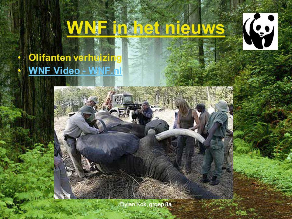 WNF in het nieuws Olifanten verhuizing WNF Video - WNF.nl