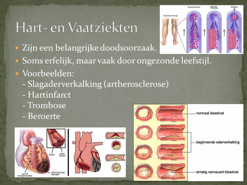 Hart- en Vaatziekten Zijn een belangrijke doodsoorzaak.