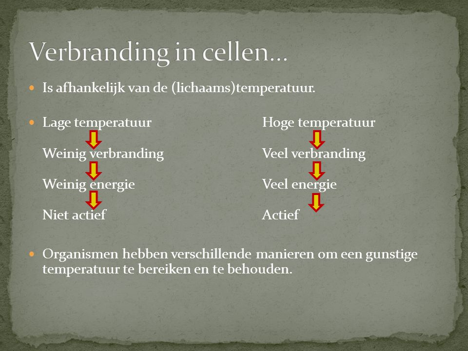 Verbranding in cellen…