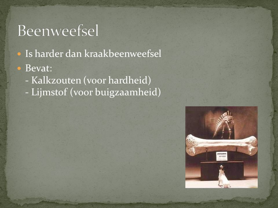 Beenweefsel Is harder dan kraakbeenweefsel