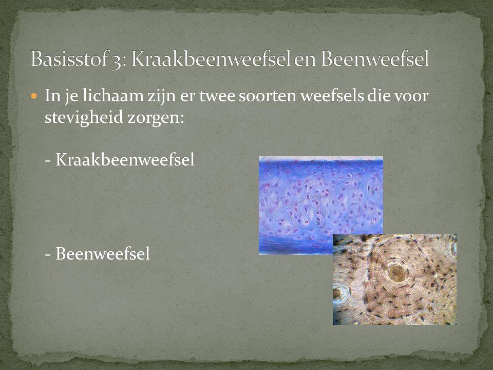 Basisstof 3: Kraakbeenweefsel en Beenweefsel