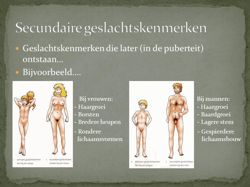 Secundaire geslachtskenmerken