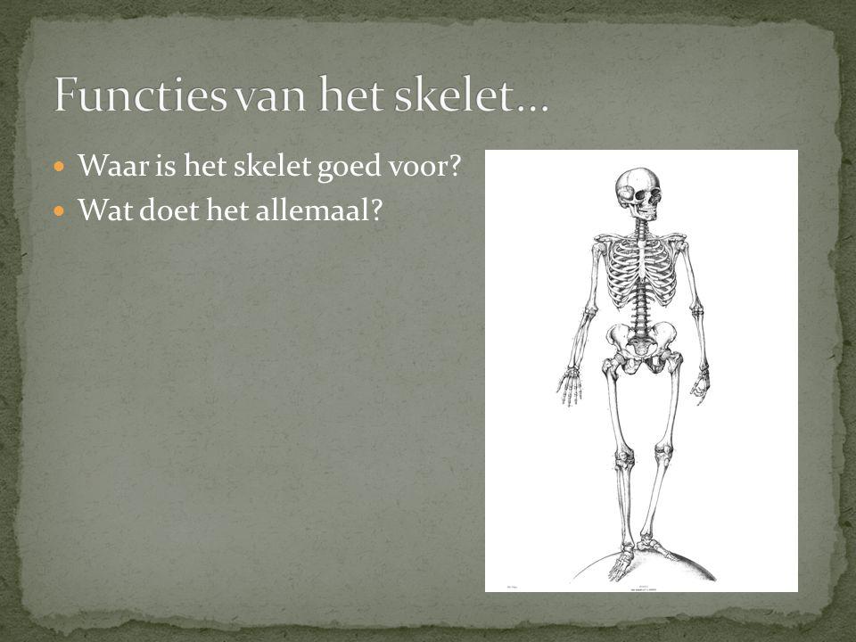 Functies van het skelet…