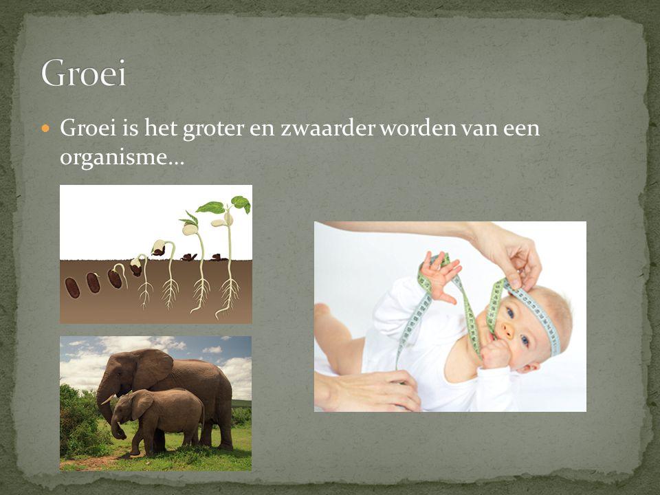 Groei Groei is het groter en zwaarder worden van een organisme…