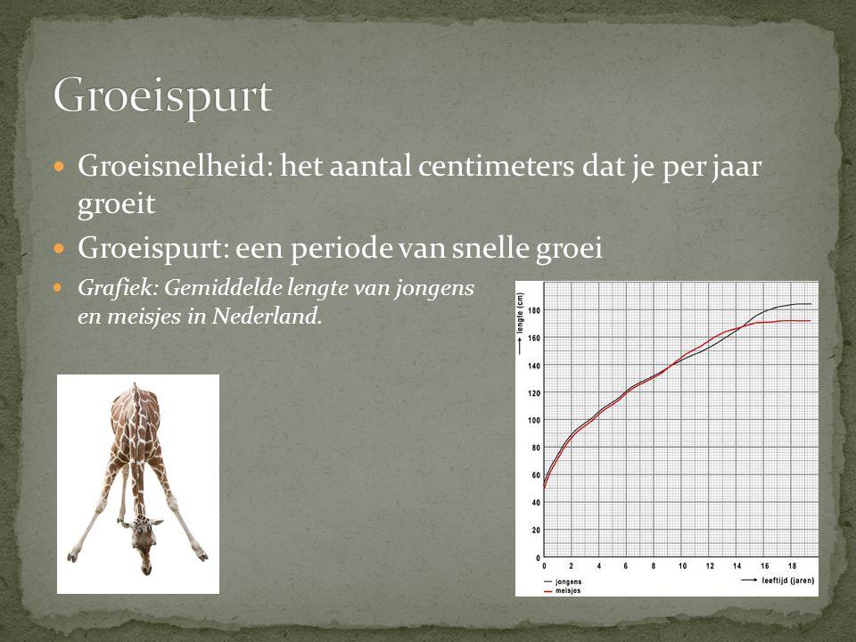 Groeispurt Groeisnelheid: het aantal centimeters dat je per jaar groeit. Groeispurt: een periode van snelle groei.