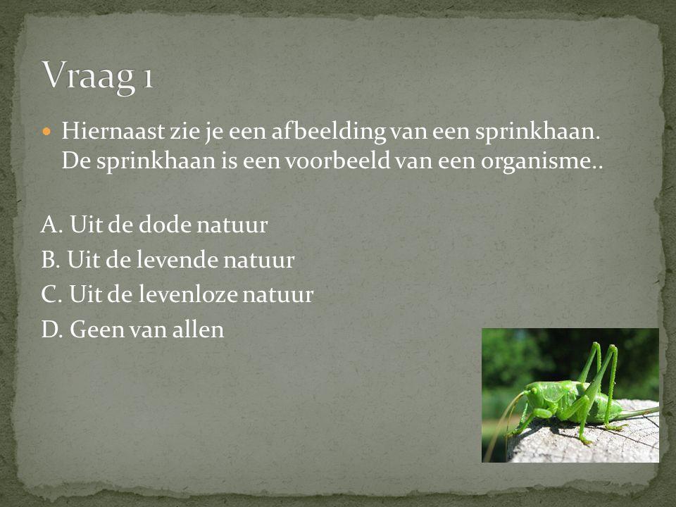 Vraag 1 Hiernaast zie je een afbeelding van een sprinkhaan. De sprinkhaan is een voorbeeld van een organisme..