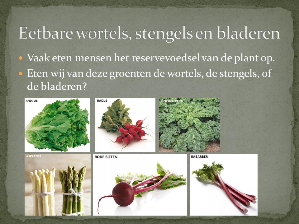 Eetbare wortels, stengels en bladeren