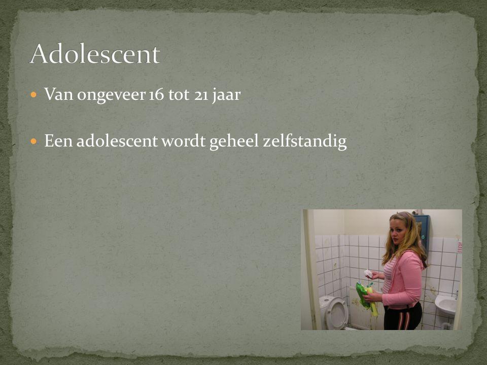 Adolescent Van ongeveer 16 tot 21 jaar