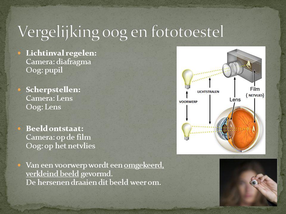 Vergelijking oog en fototoestel