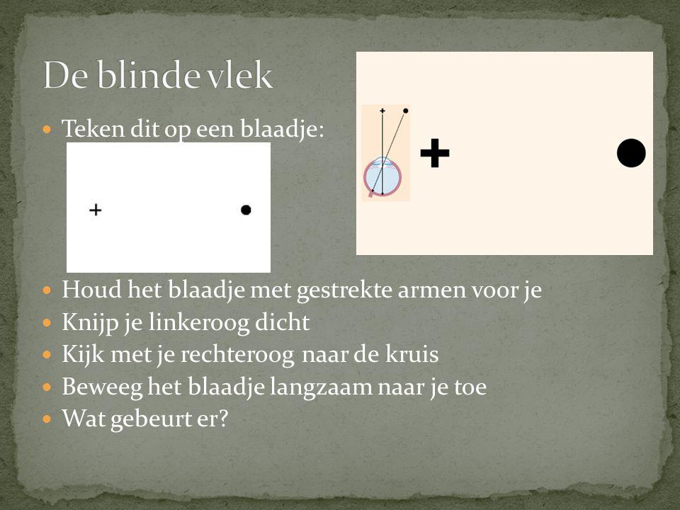 De blinde vlek Teken dit op een blaadje: