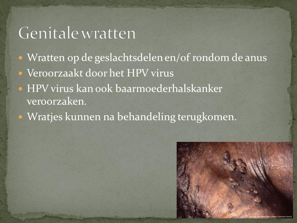 Genitale wratten Wratten op de geslachtsdelen en/of rondom de anus