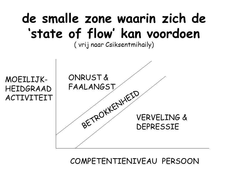 de smalle zone waarin zich de 'state of flow' kan voordoen ( vrij naar Csiksentmihaily)