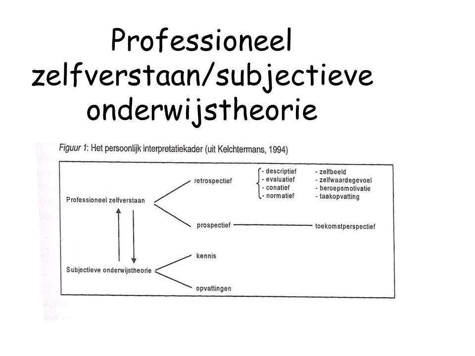 Professioneel zelfverstaan/subjectieve onderwijstheorie