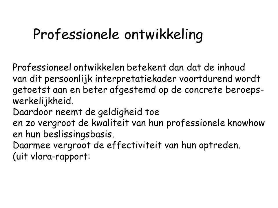 Professionele ontwikkeling
