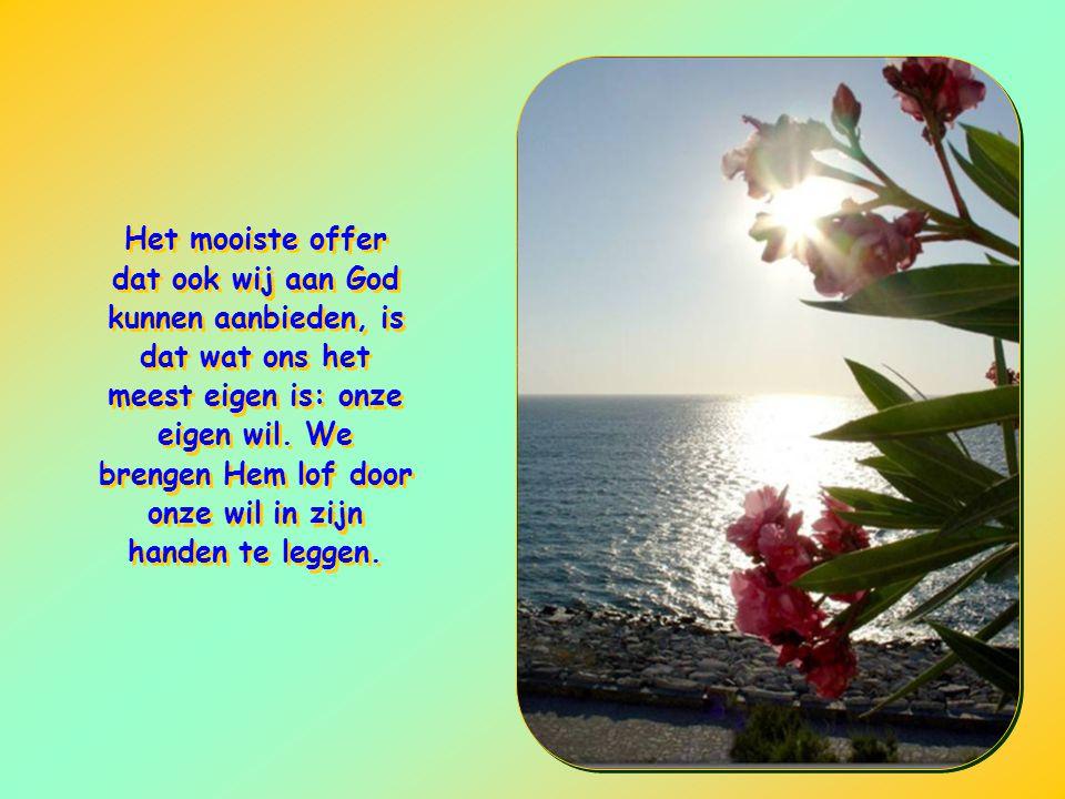 Het mooiste offer dat ook wij aan God kunnen aanbieden, is dat wat ons het meest eigen is: onze eigen wil.