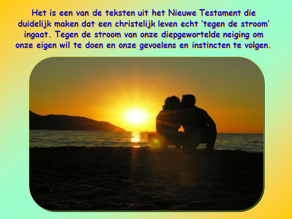 Het is een van de teksten uit het Nieuwe Testament die duidelijk maken dat een christelijk leven echt 'tegen de stroom' ingaat.