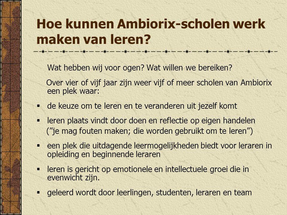 Hoe kunnen Ambiorix-scholen werk maken van leren