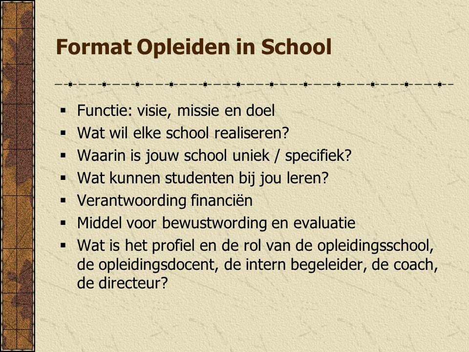 Format Opleiden in School