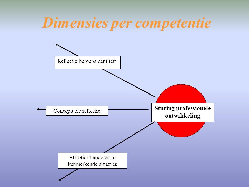 Dimensies per competentie