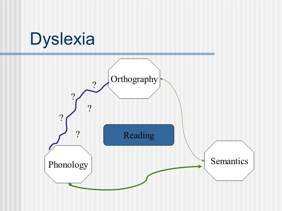 Dyslexia Orthography Reading Semantics Phonology