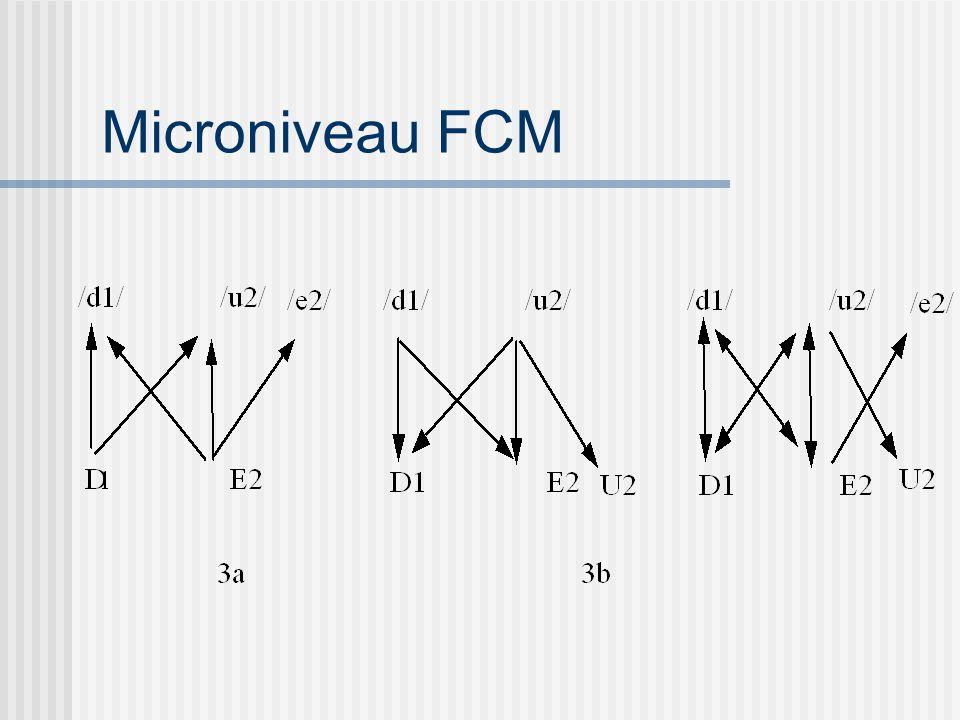 Microniveau FCM