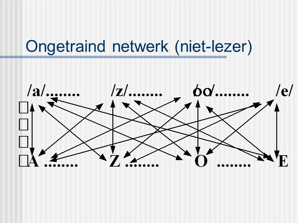 Ongetraind netwerk (niet-lezer)