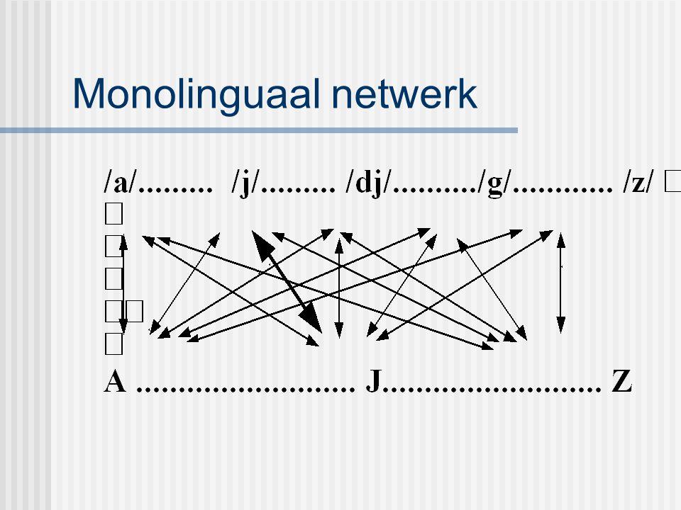 Monolinguaal netwerk