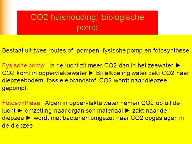 CO2 huishouding: biologische pomp