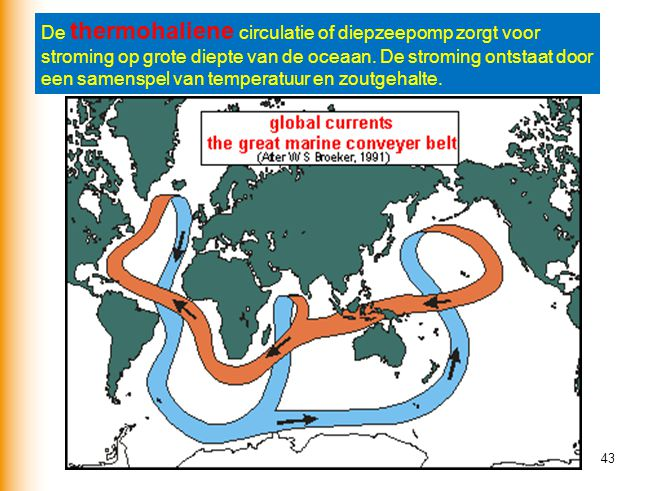 De thermohaliene circulatie of diepzeepomp zorgt voor stroming op grote diepte van de oceaan.