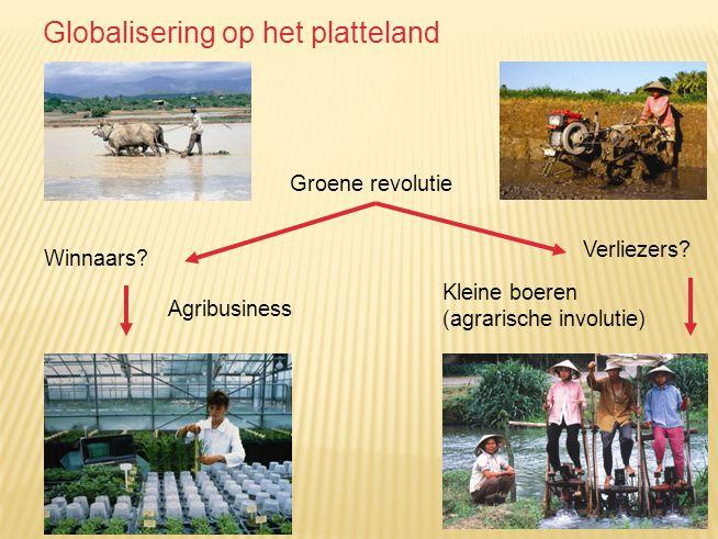 Globalisering op het platteland