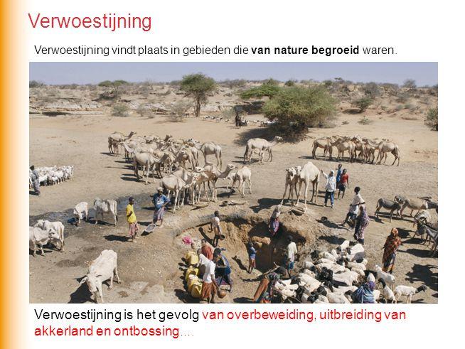 Verwoestijning Verwoestijning vindt plaats in gebieden die van nature begroeid waren.