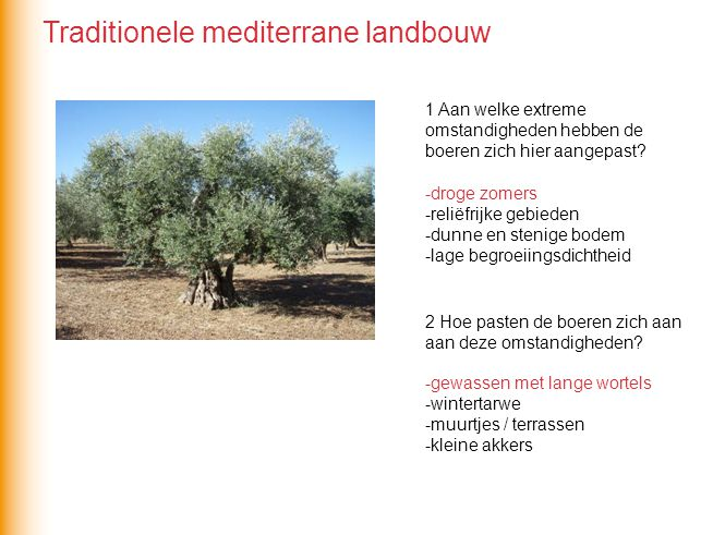 Traditionele mediterrane landbouw
