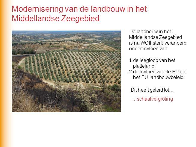 Modernisering van de landbouw in het Middellandse Zeegebied