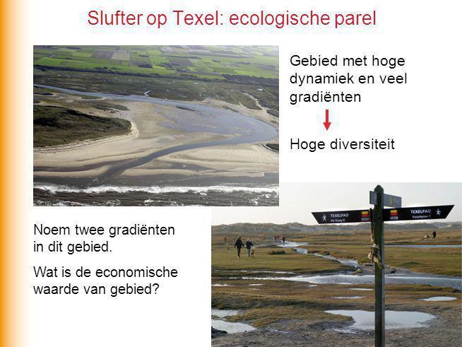 Slufter op Texel: ecologische parel